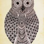 LORES-OWL-FINAL